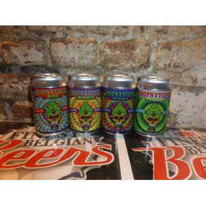 Enigma Hopnytized can pack 4x33cl